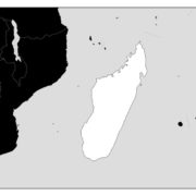 【コロナ】 マダガスカル大統領 「世界を救う処方を見つけ出した。この薬草茶を感染症患者に与えれば10日以内に回復する」